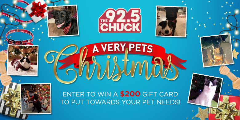 A Very PETS Christmas – Photo Contest